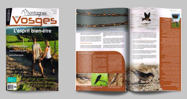 olivier-frimat-magazine-article-montagnes-vosges-photographe-journaliste-naturaliste