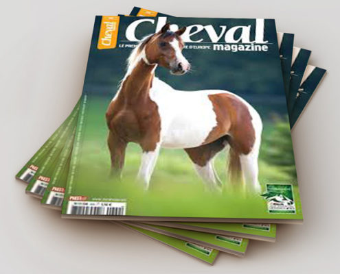 olivier-frimat-magazine-publication-cheval-photographe-journaliste-naturaliste
